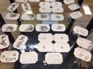 A range of piercing jewellery sold at REBEL Hessle